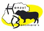 HANZYL BONSMARA'S