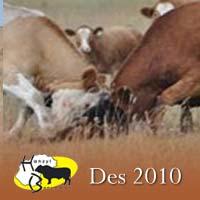 Hanzyl bulletin Desember/December 2010